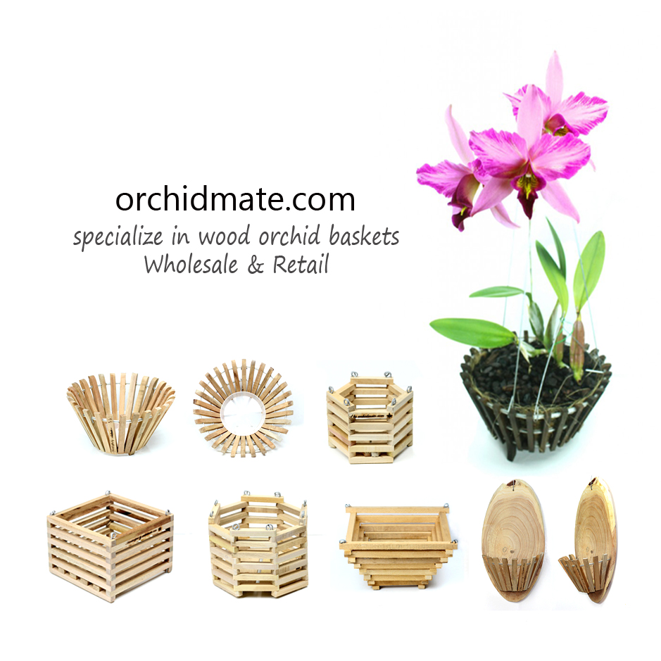 Orchidmate Orchid Supplies Wood Baskets Orchidmate Orchid Supplies