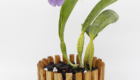 Best USA wood basket collection for orchids